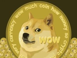 doge coin cryptocurrency